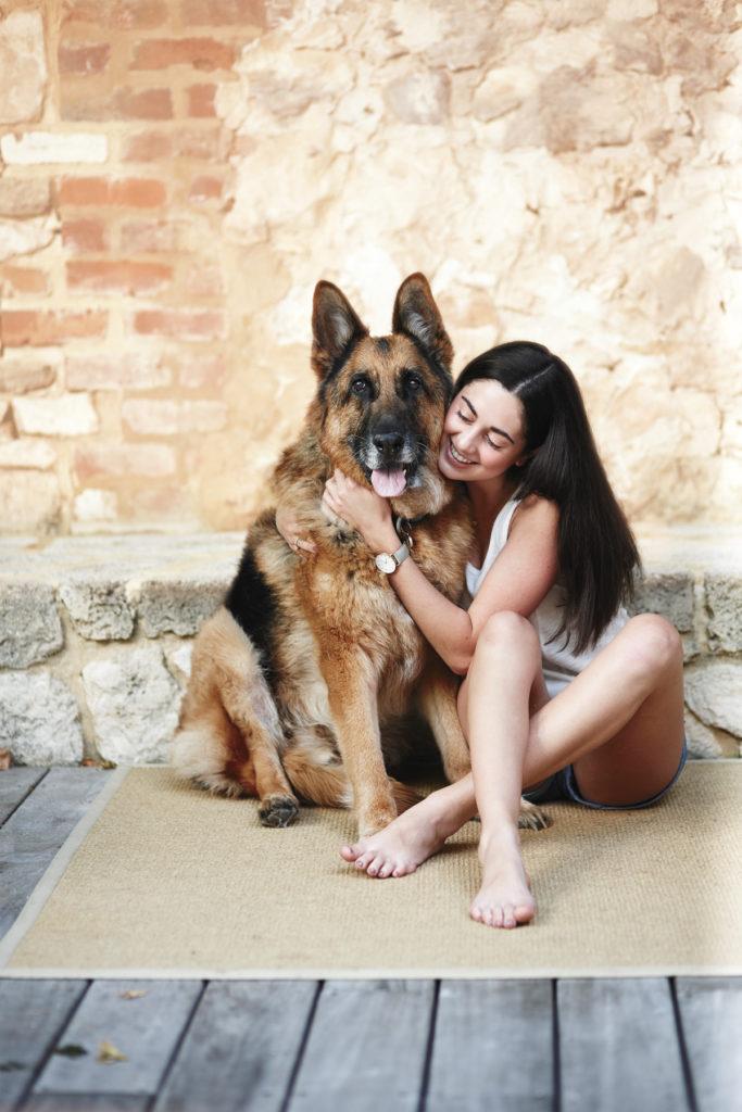 Super-Senior-Dog_Key-Image_For-Web